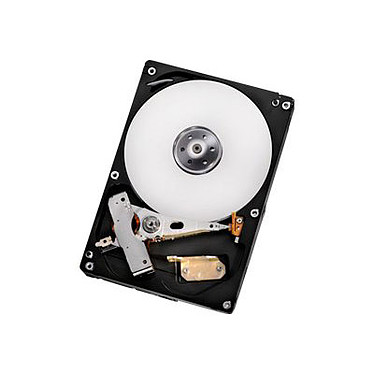 "Hitachi GST Deskstar 7K1000.D 500 Go SATA 6Gb/s Disque dur 3.5"" 7200 RPM 32 Mo Serial ATA 6 Gb/s"