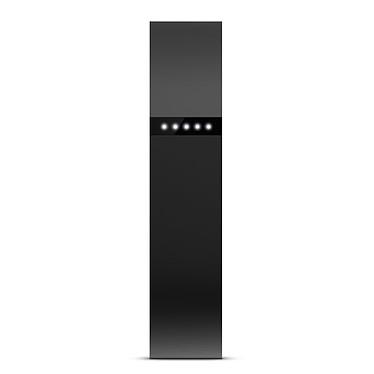 FitBit Flex Noir pas cher