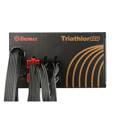 Enermax Triathlor ECO ETL550AWT-M 80PLUS Bronze pas cher