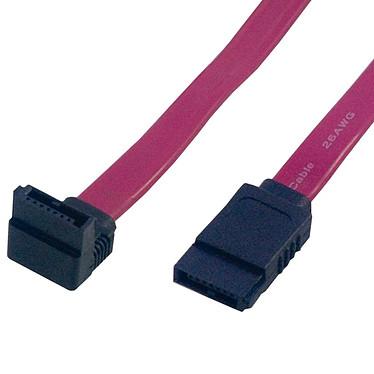 Câble SATA coudé vers le haut (50 cm)