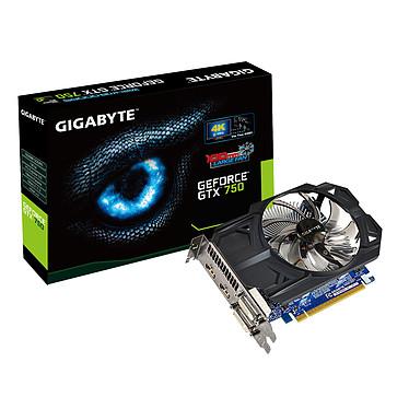 Gigabyte GV-N750OC-1GI (rev. 1.0) - GeForce GTX 750 1 Go
