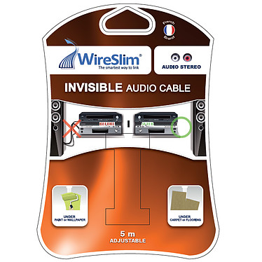 Câble audio RCA