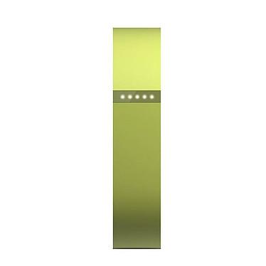 Avis FitBit Flex Lime