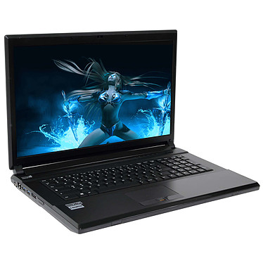 "LDLC Bellone GG5-I7-32-H20S4-P Intel Core i7-4710MQ 32 Go SSD 480 Go + HDD 2 To (2x 1 To) 17.3"" LED Full HD NVIDIA GeForce GTX 880M 8 Go Graveur DVD Wi-Fi N/Bluetooth Webcam Windows 7 Professionnel 64 bits"