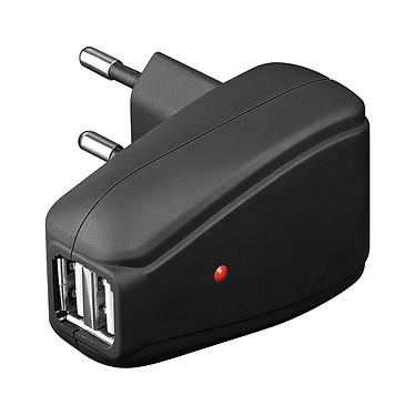 Chargeur secteur double USB (1 A)