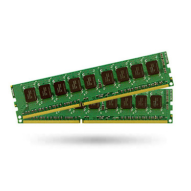Synology 16 Go (2 x 8 Go) DDR3 ECC 1600 MHz