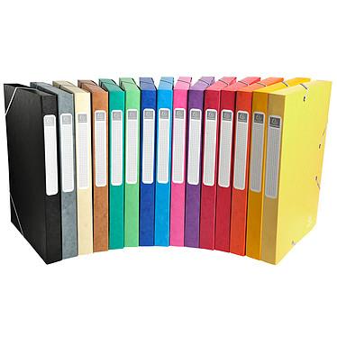 Exacompta boites de classement Cartobox dos 25 mm Assortis x 25