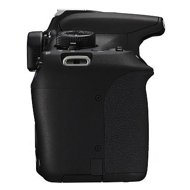 Avis Canon EOS 1200D + Objectif EF-S 18-55 mm III DC