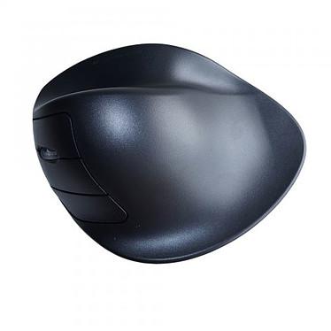 Avis Hippus HandShoe Mouse Wireless Left Hand (Large)
