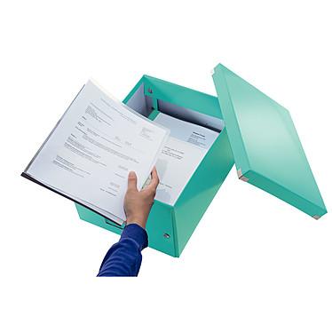 Opiniones sobre Leitz Caja de almacenamiento mediano Click & Store de 16,7 litros Menta