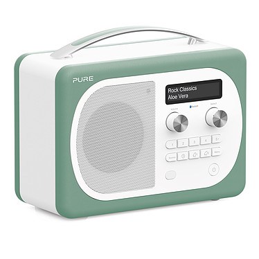 Pure Evoke D4 Mio Bluetooth Aloe Radio FM portátil y digital con Bluetooth