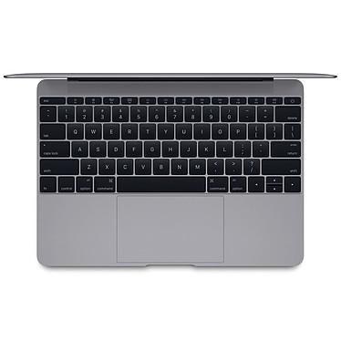 """Apple MacBook 12"""" Gris sidéral (MJY42F/A-Core M 1.3 GHz) pas cher"""