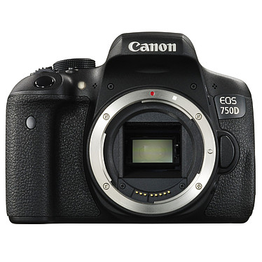 "Canon EOS 750D Reflex Numérique 24.2 MP - Ecran tactile 3"" - Vidéo Full HD - Wi-Fi - NFC (boîtier nu)"