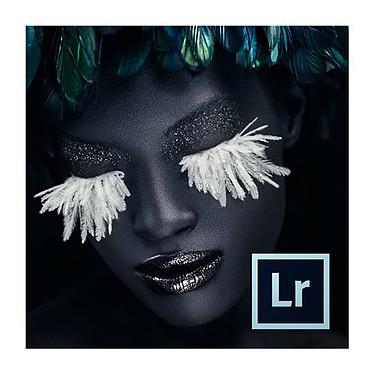 Adobe Photoshop Lightroom 6 Logiciel de retouches photos - Version boîte (DVD) (français, WINDOWS / MAC OS)