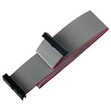 JOY-iT RB-CB4-100 Nappe de raccordement 26 broches pour Raspberry Pi - 100 cm