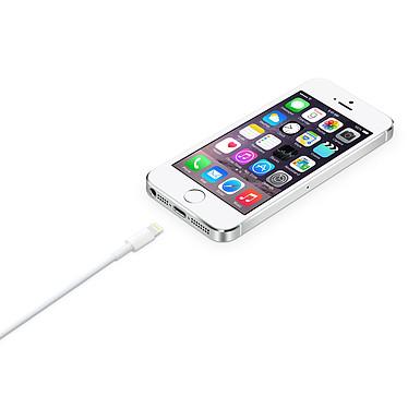 Acheter Apple Câble Lightning vers USB - 2 m