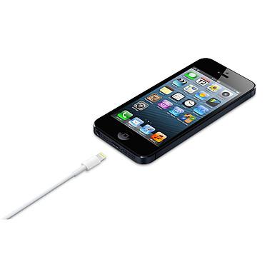 Acheter Apple Câble Lightning vers USB - 0.5 m