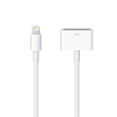 Cable Apple Lightning para 30 pines - 0,2 m Adaptador para iPhone / iPad / iPod con conector Lightning