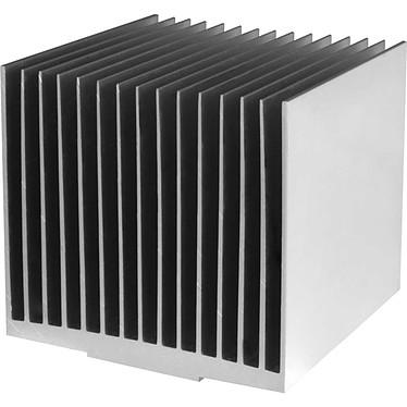 Arctic Alpine M1-Passive Dissipateur passif pour processeur (pour socket AMD AM1)
