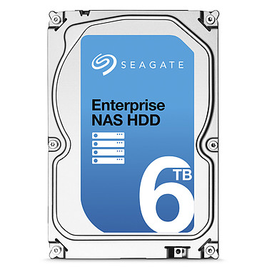 Seagate Enterprise NAS HDD 6 To