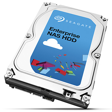Seagate Enterprise NAS HDD 8 To