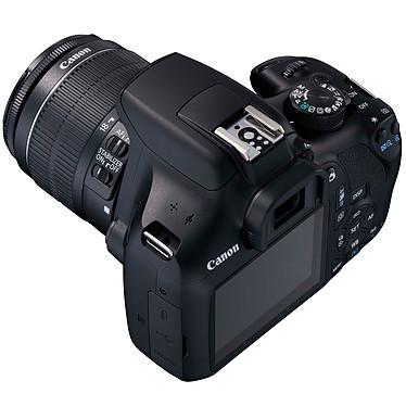 Avis Canon EOS 1300D + EF-S 18-55 mm IS II