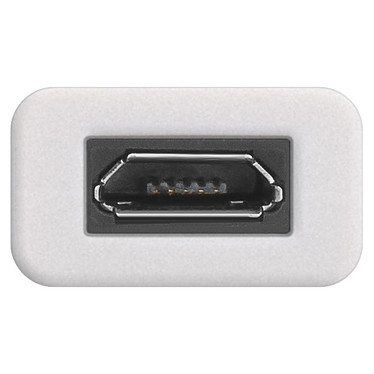 Avis Adaptateur USB-C Mâle / Micro USB 2.0 B Femelle