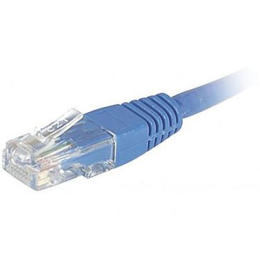 Cordon RJ45 catégorie 6 U/UTP 0.5 m (Bleu) Cordon réseau Cat 6