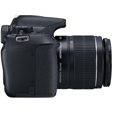 Avis Canon EOS 1300D + EF-S 18-55 mm DC III