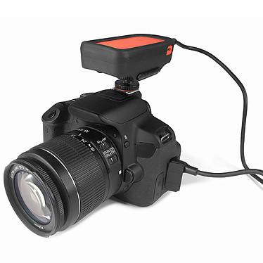 Nikon D500 + XSories Weye Feye Share pas cher