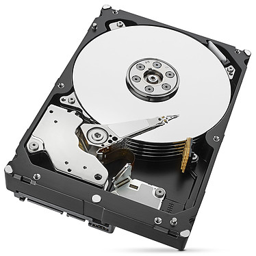 Seagate SkyHawk 6 To pas cher