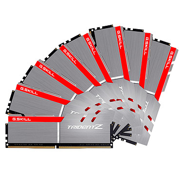 G.Skill Trident Z 64 Go (8x 8 Go) DDR4 3200 MHz CL16 Quad Channel Kit 8 tiras de RAM DDR4 PC4-25600 - F4-3200C16Q2-64GTZB (10 años de garantía de G. Skill)