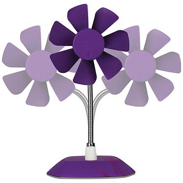Arctic Breeze (Violet) pas cher