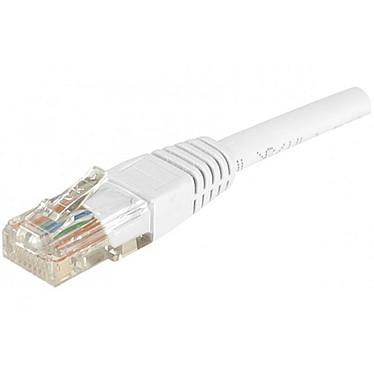 Câble RJ45 catégorie 6 U/UTP 2 m (Blanc)