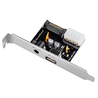 Silverstone ECP01 Carte d'extension double sortie jack 12V DC jusqu'à 5A et Type-A 5V port USB jusqu'à 3A
