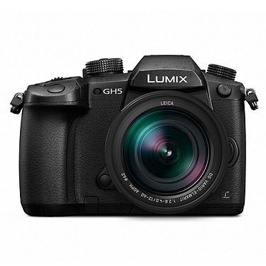 Panasonic DMC-GH5 + Leica 12-60 mm