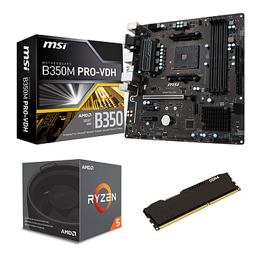 Kit Upgrade PC AMD Ryzen 5 1600 MSI B350M PRO-VDH 8 Go