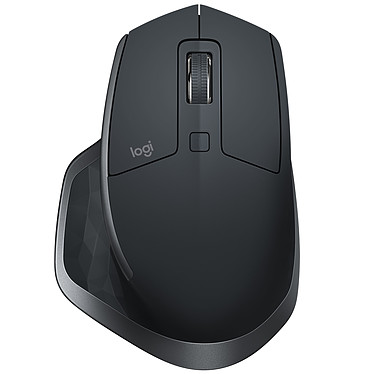Logitech MX Master 2S negro