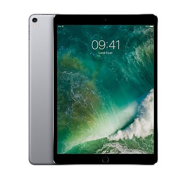 """Apple iPad Pro 10.5 pulgadas 256GB Wi-Fi Sidereal Grey Internet Tablet - Apple A10X 64-bit 4GB eMMC 256GB 10.5"""" Wi-Fi AC / Bluetooth Webcam iOS 10"""" LED touchmonitor"""
