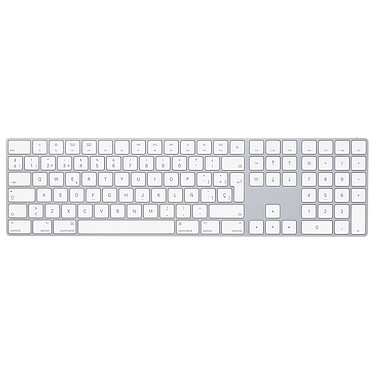Apple Magic Keyboard Pavé Numérique (ES)