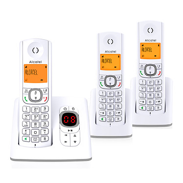 Alcatel F530 Voice Trio Gris
