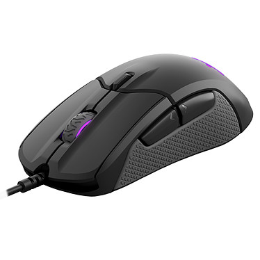 Avis SteelSeries Rival 310