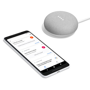 Google Home Mini Galet pas cher