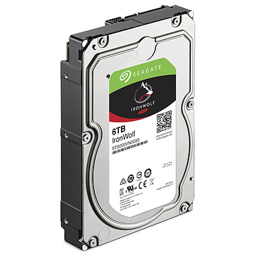 Acheter Seagate IronWolf 6 To (ST6000VN0033)