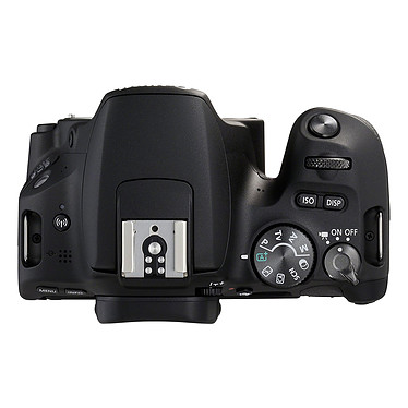 Avis Canon EOS 200D + SIGMA 18-250mm f/3.5-6.3 DC Macro OS HSM