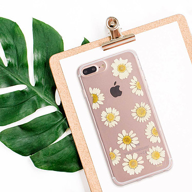 Acheter Flavr iPlate Real Flower Daisy iPhone 6 Plus/6s Plus/7 Plus/8 Plus