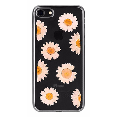 Flavr iPlate Real Flower Daisy iPhone 6/6s/7/8