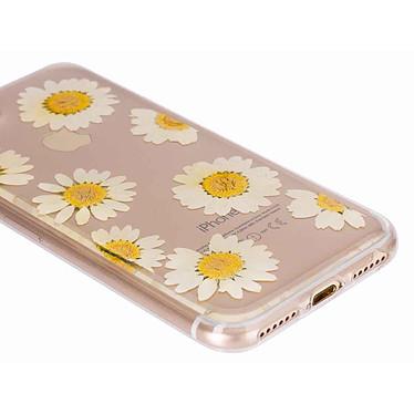 Avis Flavr iPlate Real Flower Daisy iPhone 6/6s/7/8