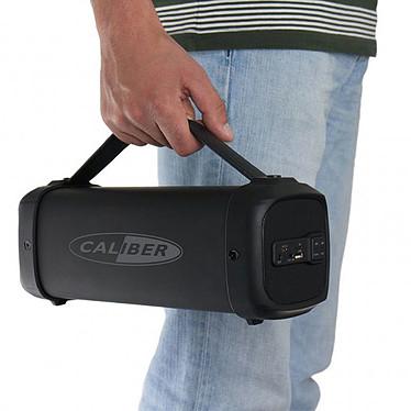 Opiniones sobre Caliber HPG425BT