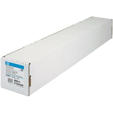 HP Q8004A Papier normal (rouleau de 594 mm x 91,4 m)